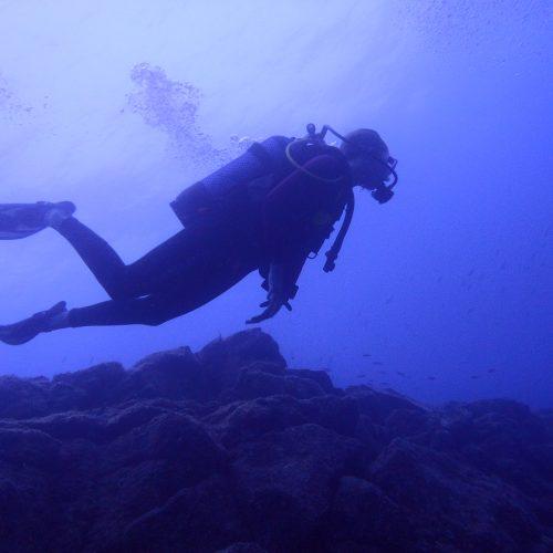 Szkolenie z nurkowania rekreacyjnego 2017